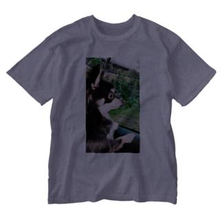 凛としたイヌ Washed T-shirts