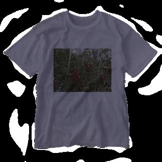 Masakiのミニトマト収穫前 Washed T-shirts