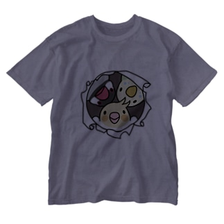 なかよしインコ【まめるりはことり】 Washed T-shirts
