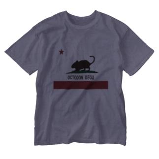 パブリックデグーグラス Washed T-shirts