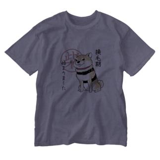 換毛期/キリッ(赤柴) Washed T-shirts