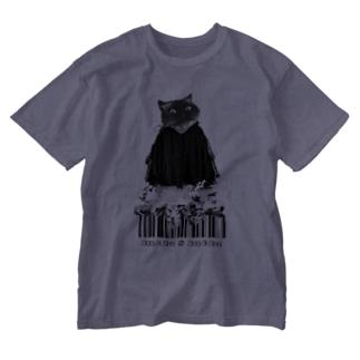 fashionista cat... Washed T-shirts