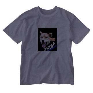 ヘイ 柴 Washed T-shirts