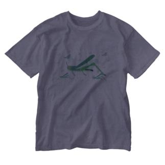 サバクトビバッタ 孤独相 群体・蝗害  Washed T-shirts