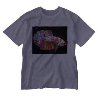 ベタキャンディ Washed T-shirts