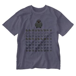 整列セキセイインコ隊【まめるりはことり】 Washed T-shirts