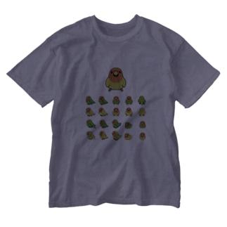 整列コザクラインコ隊【まめるりはことり】 Washed T-shirts