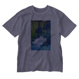 ダンボベタ Washed T-shirts