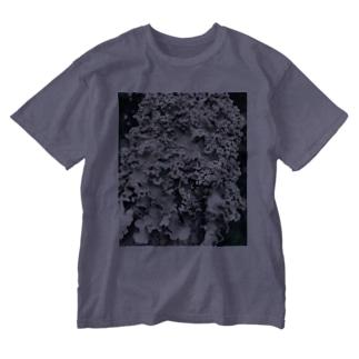 地衣 Washed T-shirts