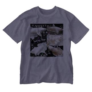 ダンボベタ繁殖✨ Washed T-shirts