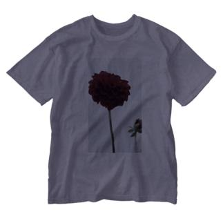 天竺牡丹 Washed T-shirts