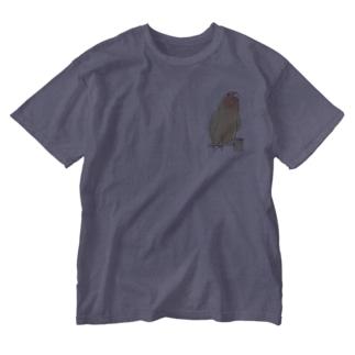 得意げ可愛い コザクラインコちゃん【まめるりはことり】 Washed T-shirts