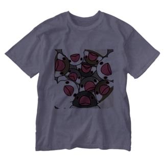みっちりむっちり過密文鳥さん【まめるりはことり】 Washed T-shirts