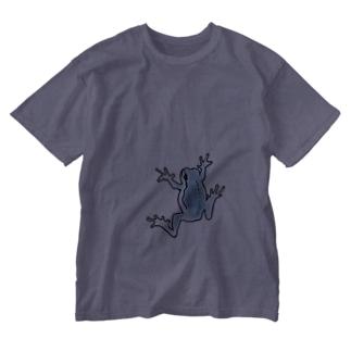 ハウカエル(ブルー・BIG) Washed T-shirts