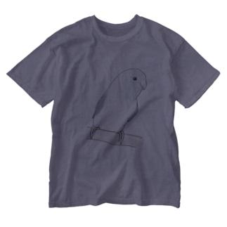 おしゃまなマメルリハのるりちゃん【まめるりはことり】 Washed T-shirts