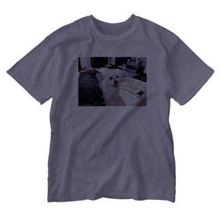 ノーマルすけきよ Washed T-shirts