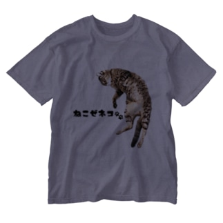 ねこぜネコ Washed T-shirts