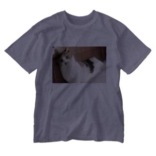 にゃんさん Washed T-shirts
