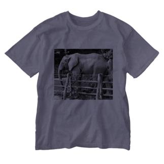 ぞうさん Washed T-shirts