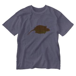 オオアタマガメ Washed T-shirts