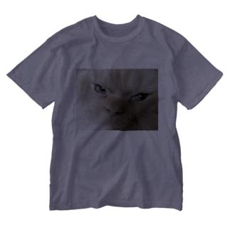 鋭い猫 Washed T-shirts