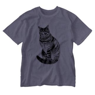 こっちを見ているキジトラ猫 Washed T-shirts