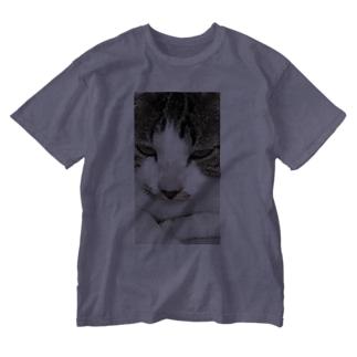 外猫サバたん Washed T-Shirt