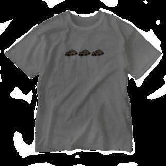 けわいのうたたねたぬき_カラー_トリプル Washed T-shirts
