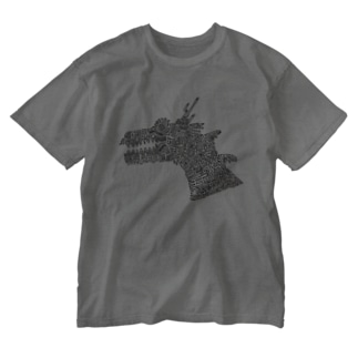 DRAGON Washed T-shirts