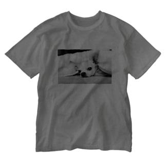 モノクロチワワ(アンニュイ1) Washed T-shirts