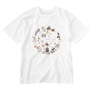 カピバラべぇかりぃとずんぐり〜ず Washed T-Shirt