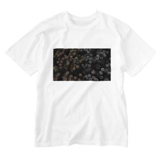相対性理論 Washed T-shirts