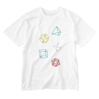 Regular Polyhedron Washed T-shirts