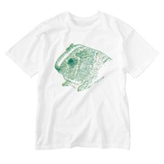 緑と黄色のモルモット Washed T-shirts