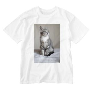 cat_20190306_0982 Washed T-shirts