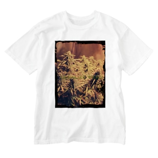 Ligalize weed Washed T-shirts