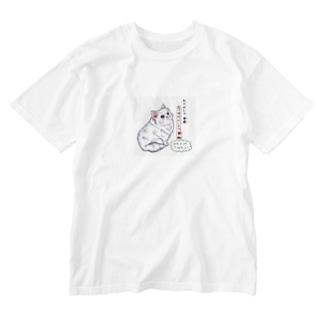 平成から令和へ~ねこ Washed T-shirts