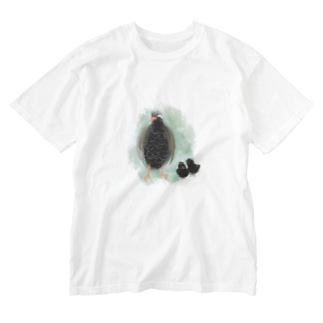 いきものイラスト(ヤンバルクイナの親子) Washed T-shirts
