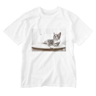 cat_20190506_8165 Washed T-shirts