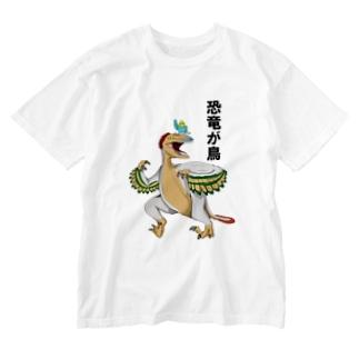 恐竜が鳥 Washed T-shirts