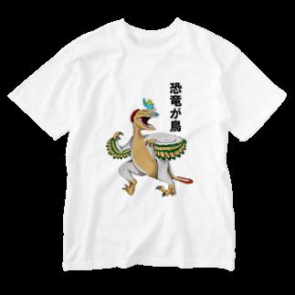 ✳︎トトフィム✳︎の恐竜が鳥 Washed T-shirts