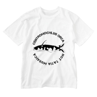 ホルスタインタティア  Washed T-shirts