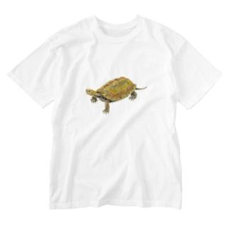 ここにいるよ、ニホンイシガメ Washed T-shirts