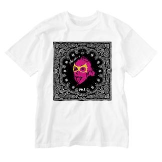シュタイン2 Washed T-shirts