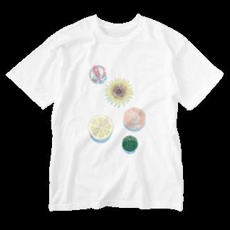 渡邊野乃香のお店のまるまるサマー Washed T-shirts