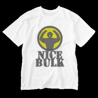 AURA_HYSTERICAのNice_Bulk Washed T-shirts