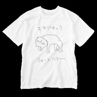 路地裏ねっとのエキゾチックショートヘアー Washed T-shirts