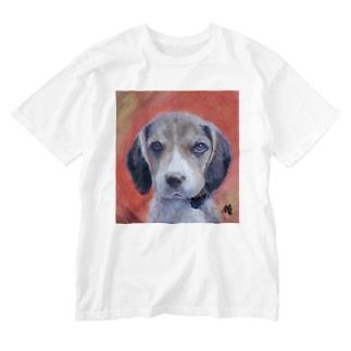 犬 Dog NumberOne Washed T-shirts