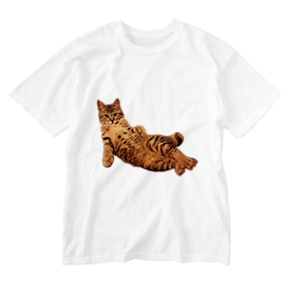 Elegant Cat 2 Washed T-shirts