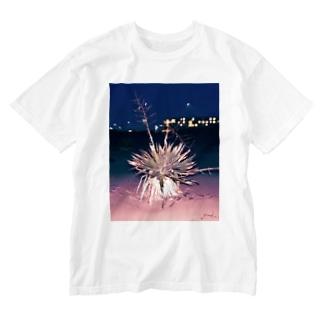 海辺の植物 Washed T-shirts